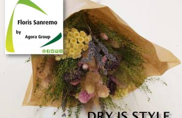 Dry is Style… scarica il catalogo completo in pdf
