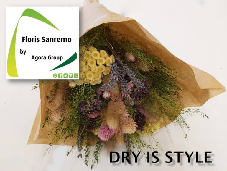 Dry is Style… download the assortment here